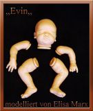 Evin Kit  - Elisa Marx